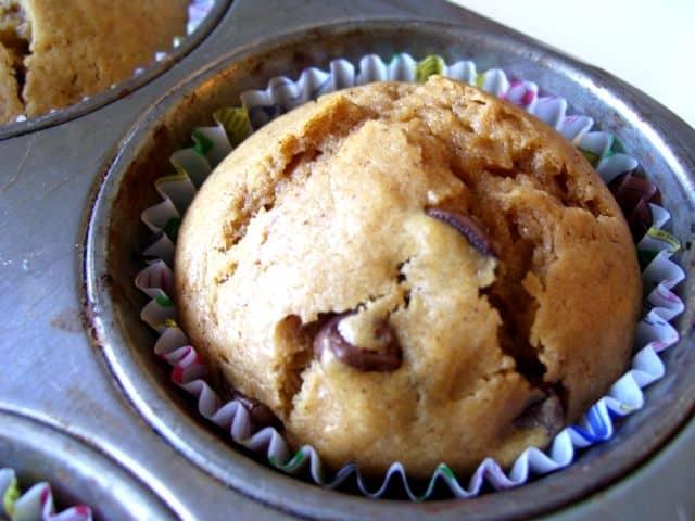 Chocolate Chip Cappuccino Muffin Recipe