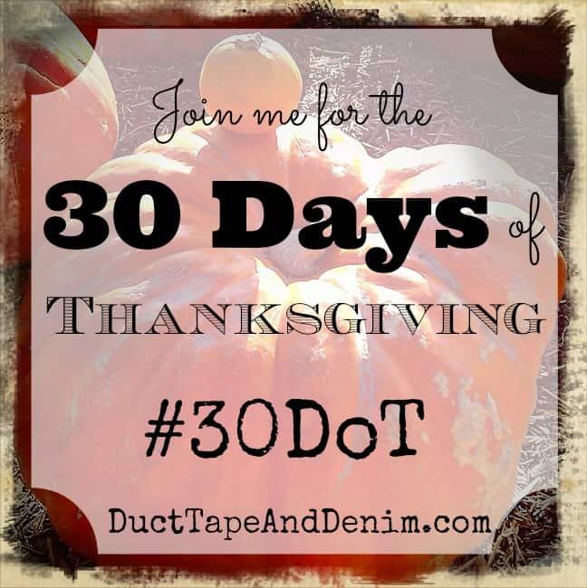 30 Days of Thanksgiving 2013 – #30DoT