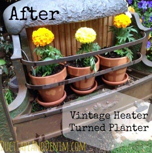 Marigolds in my vintage heater patio planter | DuctTapeAndDenim.com