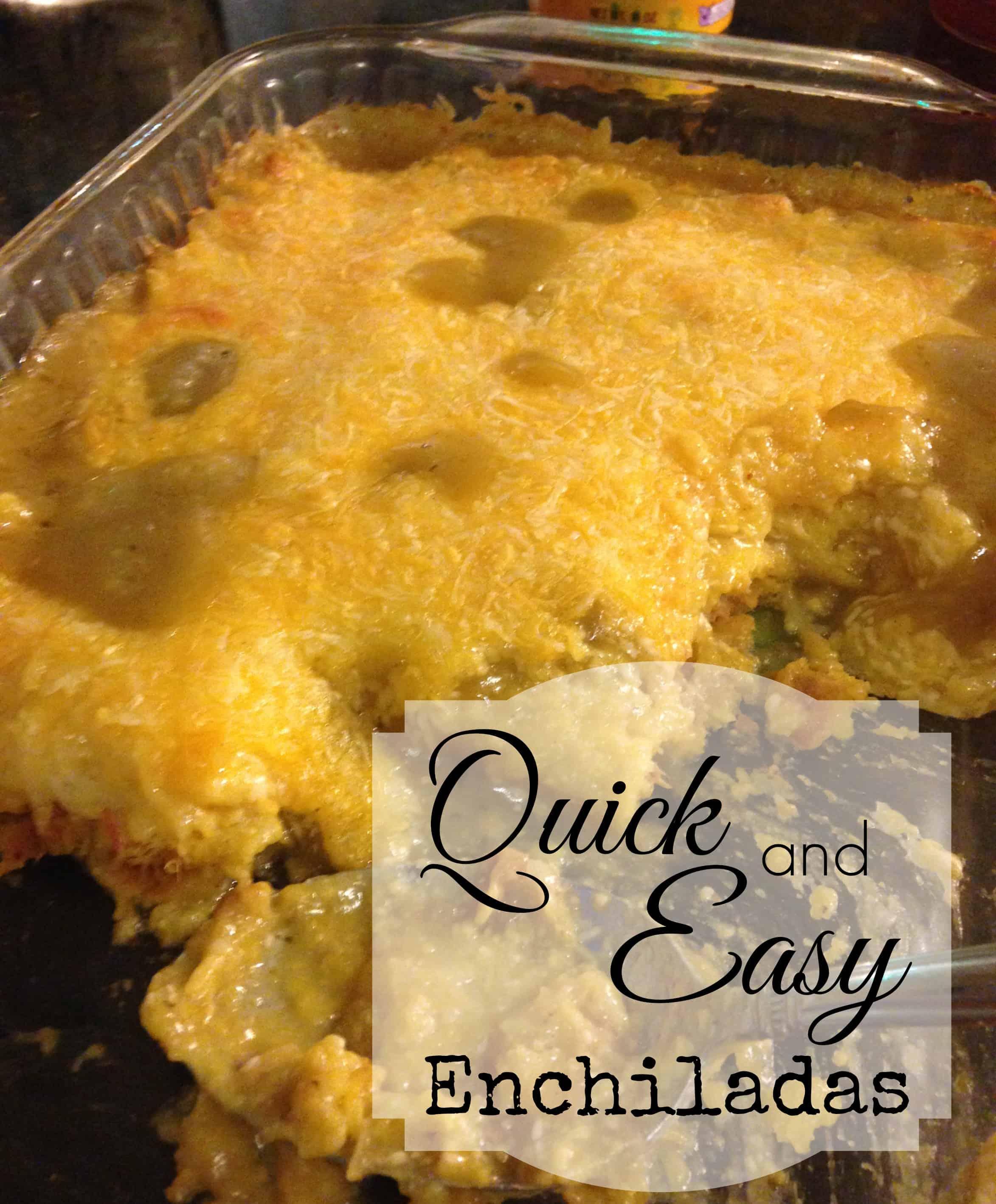 Quick Easy Enchilada Recipe