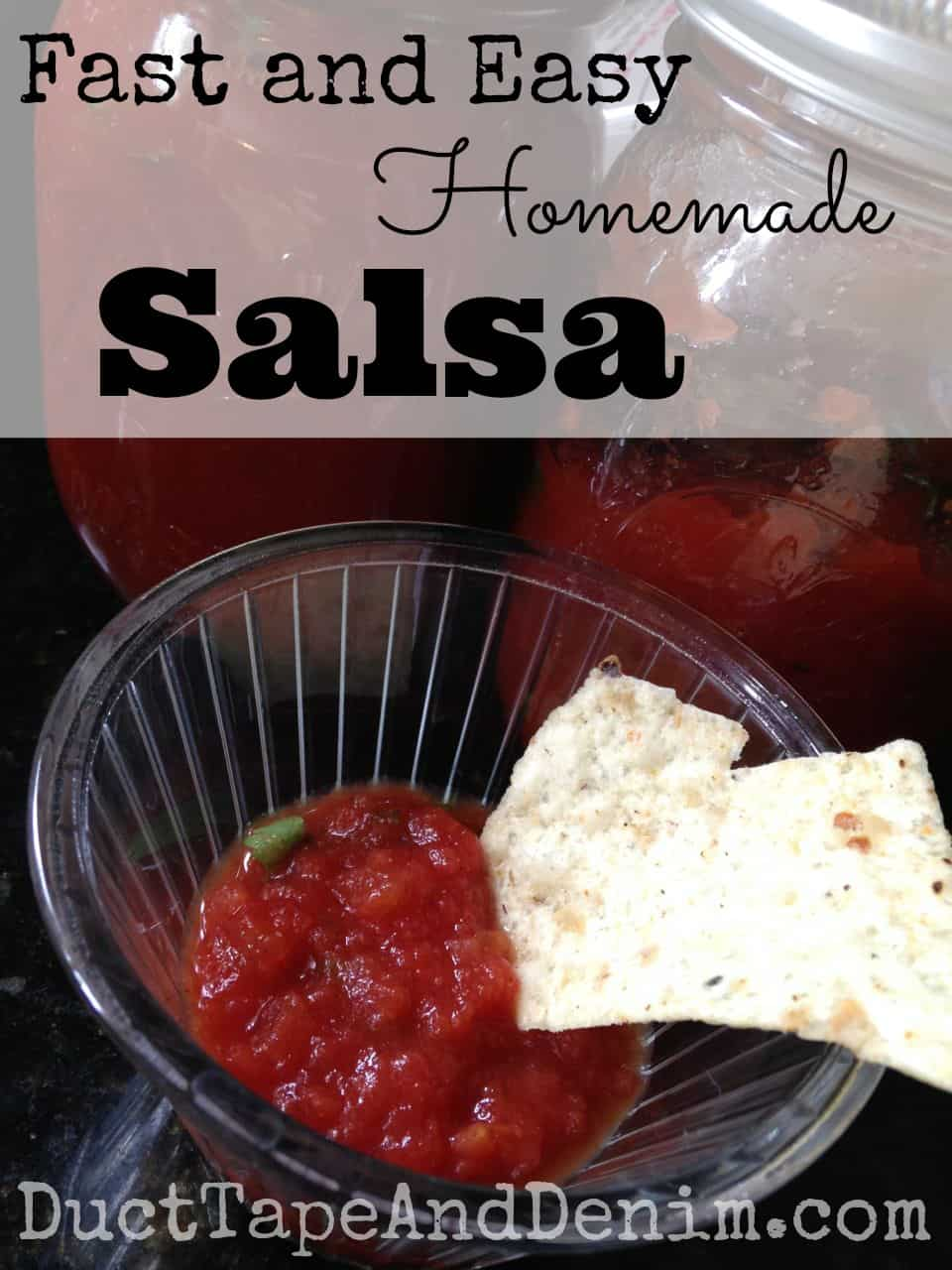 Fast Easy Homemade Salsa Recipe