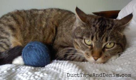 My kitty isn't too excited about playing with my homemade dryer ball | DuctTapeAndDenim.om