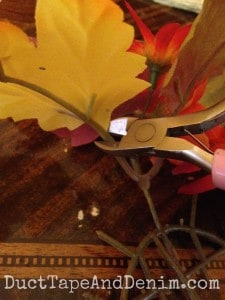 Clip the leaves with wire cutters