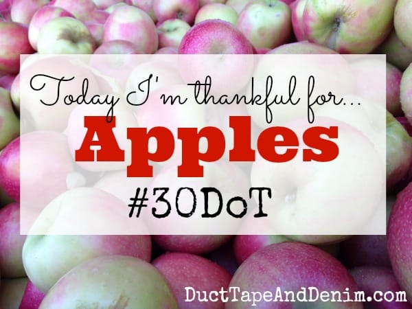 Today I'm thankful for apples. 30 Days of Thanksgiving. #30DoT| DuctTapeAndDenim.com