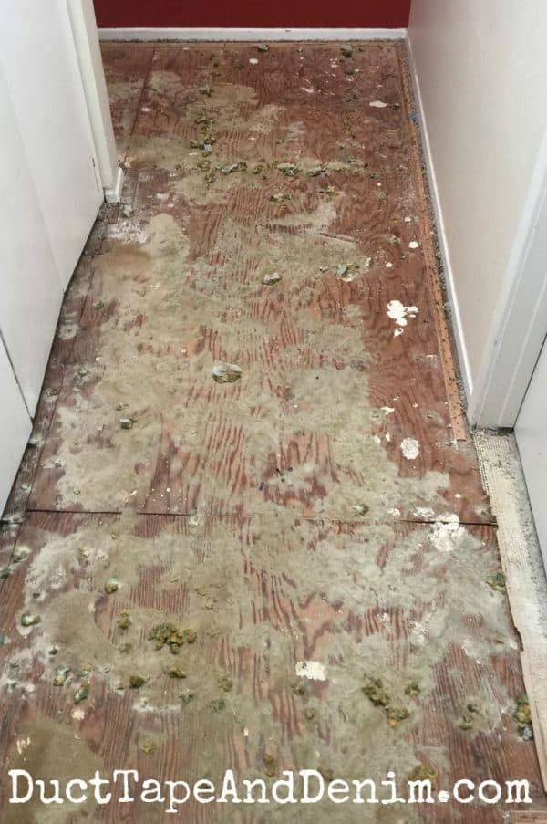 Yuck! That's what was under our carpet | DuctTapeAndDenim.com