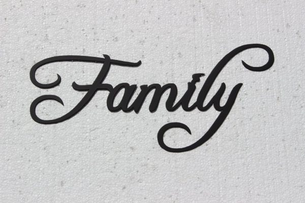 FAMILY metal word art wall decor ~ Gift guide for Fixer Upper fans ~ DuctTapeAndDenim.com