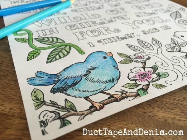 1 Thessalonians 5:16-18 close up of blue bird on FREE Bible verse coloring page. More on DuctTapeAndDenim.com