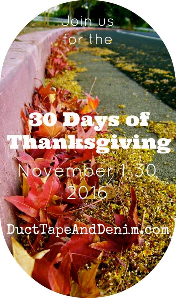 Join us for the 30 Days of Thanksgiving 2016 on DuctTapeAndDenim.com