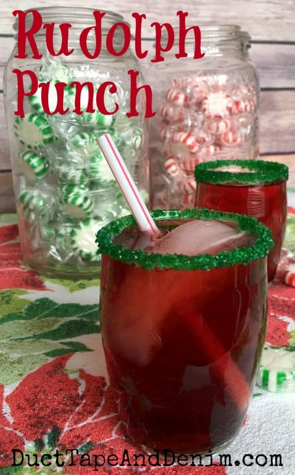 Rudolph punch my kids 39 favorite easy christmas punch for Fun easy party drinks