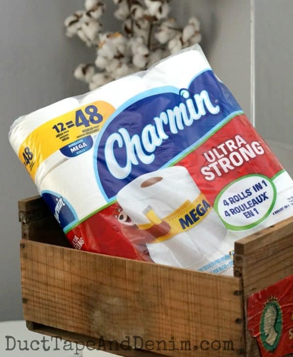 Charmin halftime bathroom break | DuctTapeAndDenim.com