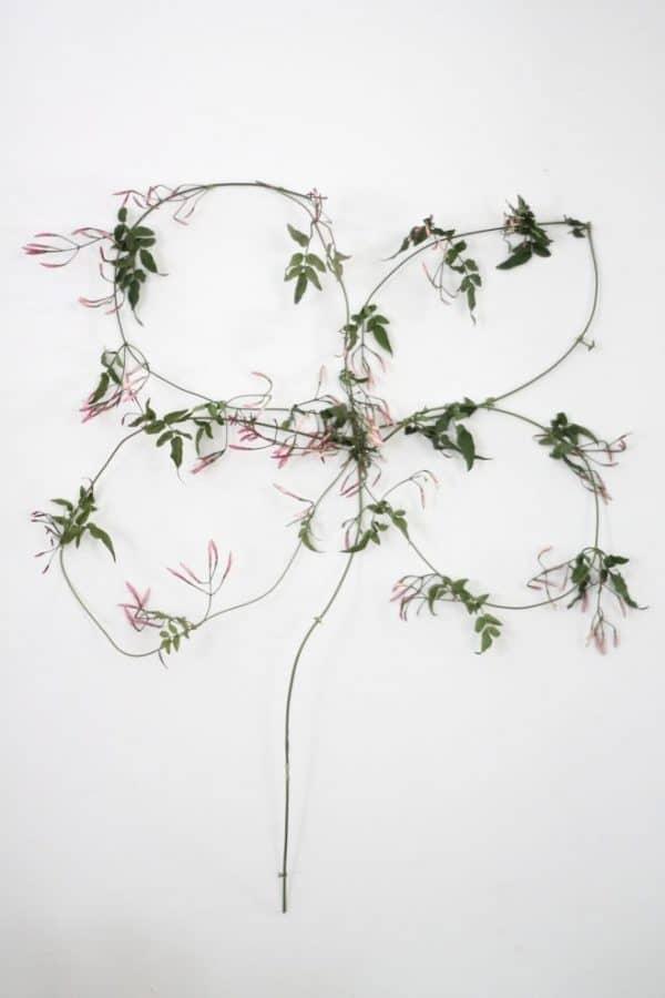 Four leaf clover wreath made of vines