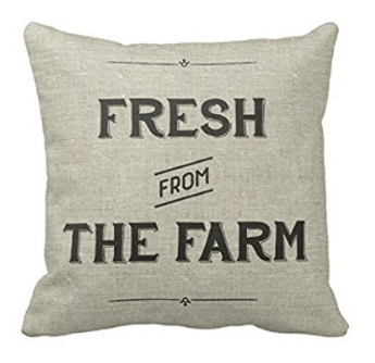 Fresh from the farm farmhouse style pillow cover, see more spring pillow covers on DuctTapeAndDenim.com