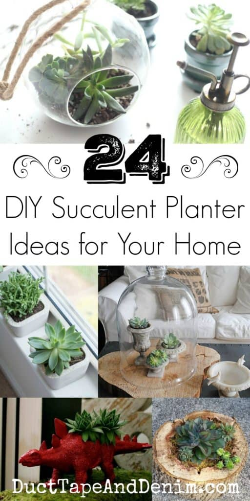 24 DIY succulent planter ideas for your home. DuctTapeAndDenim.com