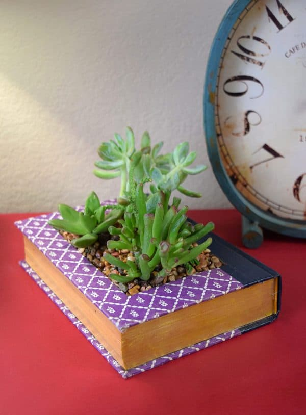 Book succulent planter and more DIY planters on DuctTapeAndDenim.com