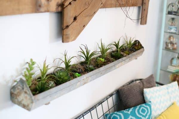 Chicken feeder planter