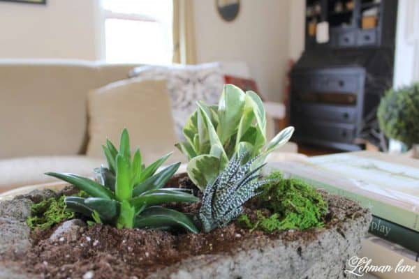Concrete planter for succulents and more DIY ideas on DuctTapeAndDenim.com
