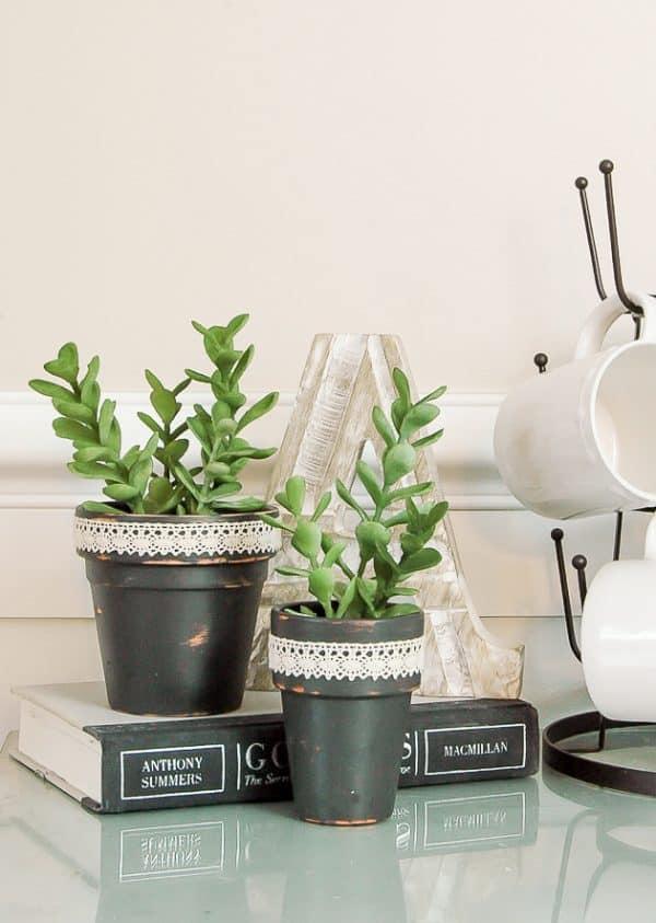 Dollar store succulent pots