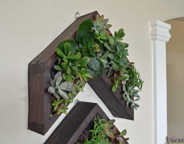Vertical Arrow succulent planters and more DIY planter ideas on DuctTapeAndDenim.com