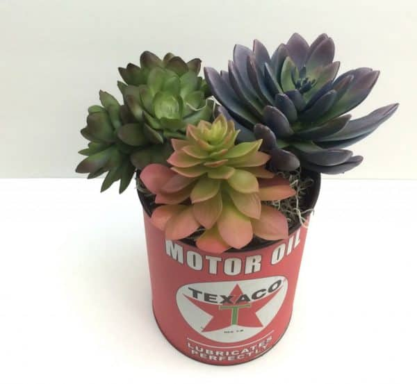 Vintage can faux succulents