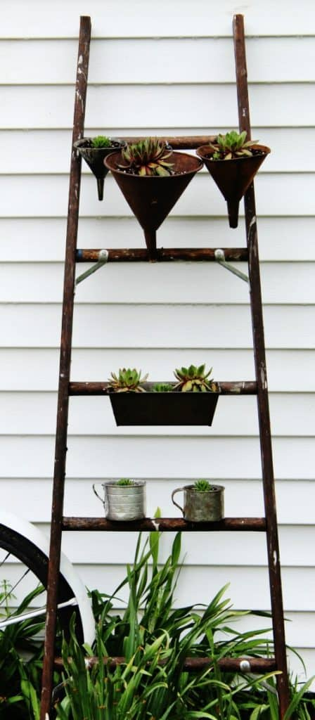 Vintage ladder planter and lots more DIY succulent planters on DuctTapeAndDenim.com