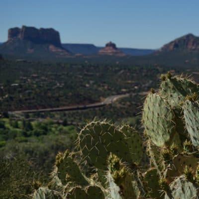 Arizona Road Trip Playlist