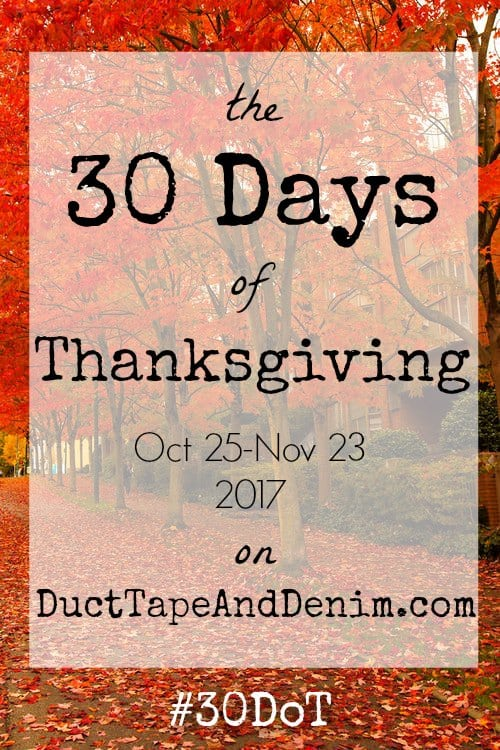30 Days of Thanksgiving, October 25 - November 23, 2017 on DuctTapeAndDenim.com