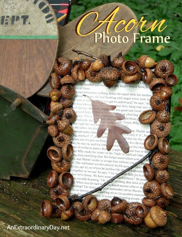 acorn photo frame
