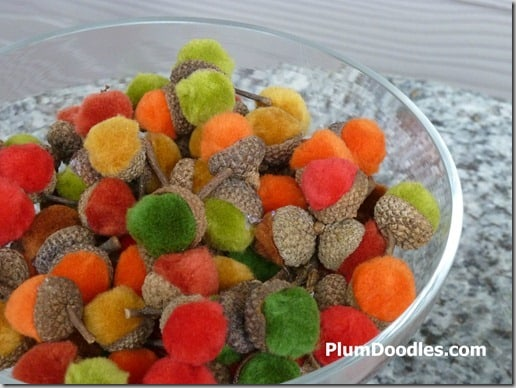 velvety acorns