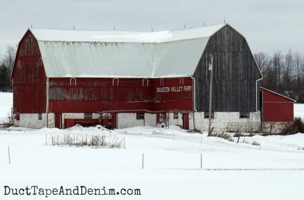 Saugeen Valley Farm, red gambrel barn in Ontario, Canada | DuctTapeAndDenim.com