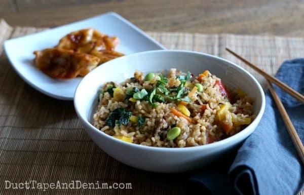Fried rice and dumplings | DuctTapeAndDenim.com