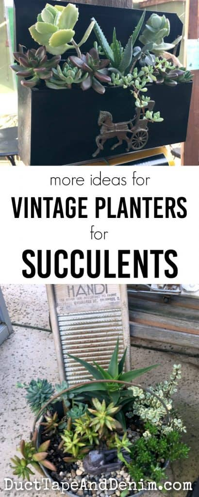 More ideas for vintage succulent planters from our favorite antique mall | DuctTapeAndDenim.com