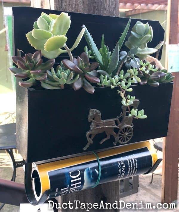 Succulents in mailbox | DuctTapeAndDenim.com
