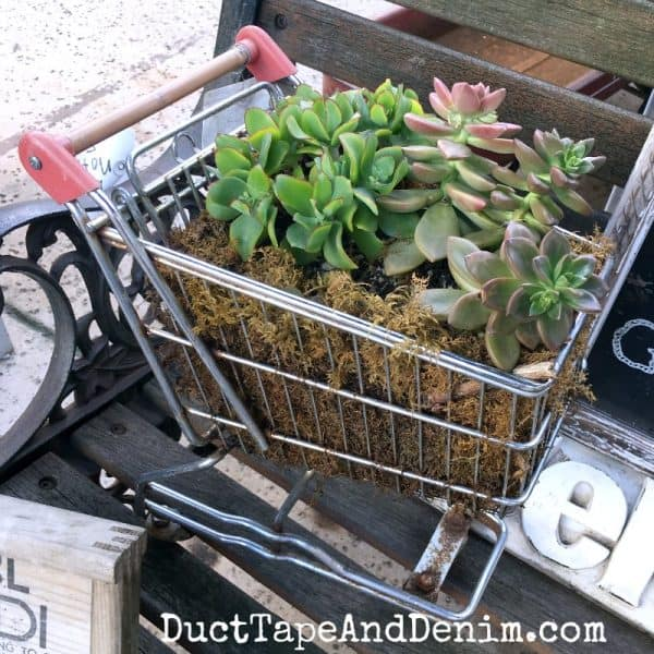Succulents in small shopping cart | DuctTapeAndDenim.com