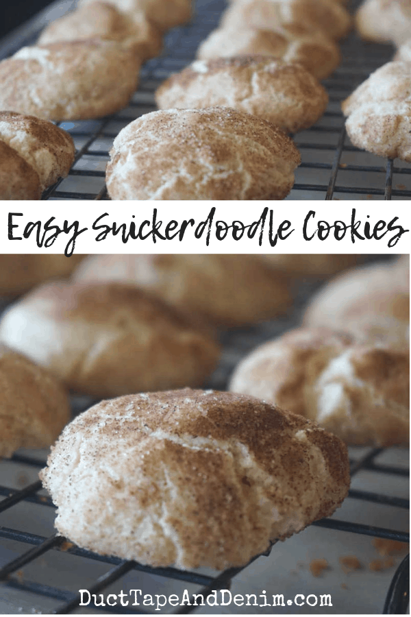 easy snickerdoodle cookies, collage 1